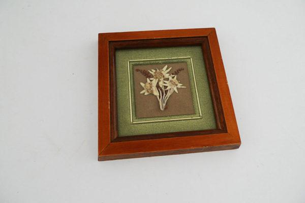 Edelweiss in Rahmen