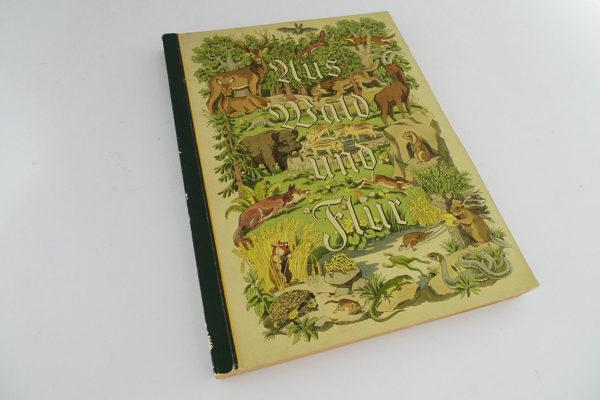 Aus Wald und Flur