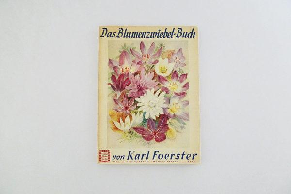 Das Blumenzwiebelbuch