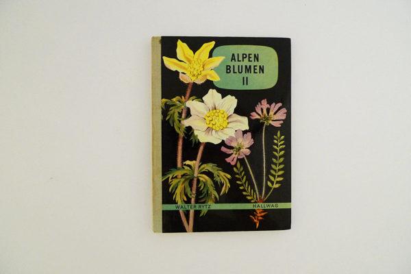 Hallwag Taschenbuch - Alpenblumen II