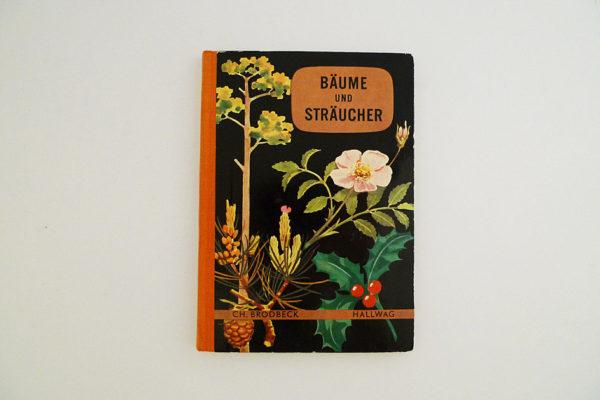 Hallwag Taschenbuch - Bäume und Sträucher