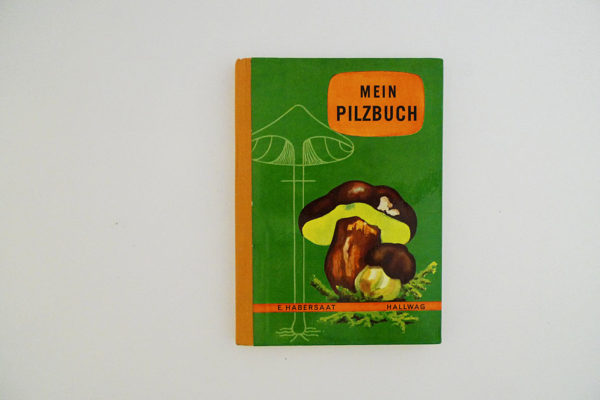 Hallwag Taschenbuch - Mein Pilzbuch