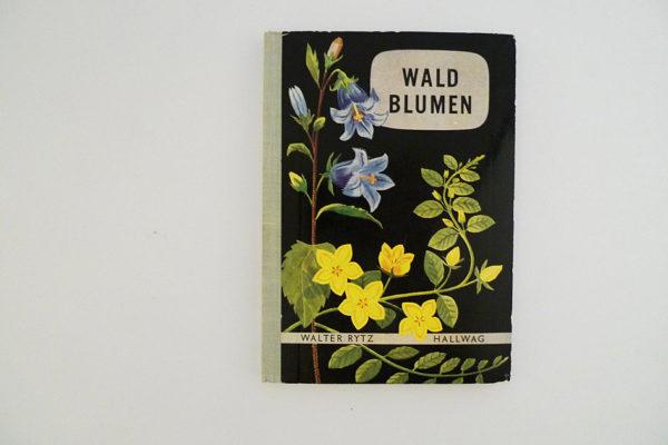 Hallwag Taschenbuch - Waldblumen