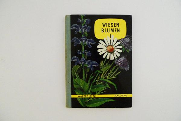 Hallwag Taschenbuch - Wiesenblumen I