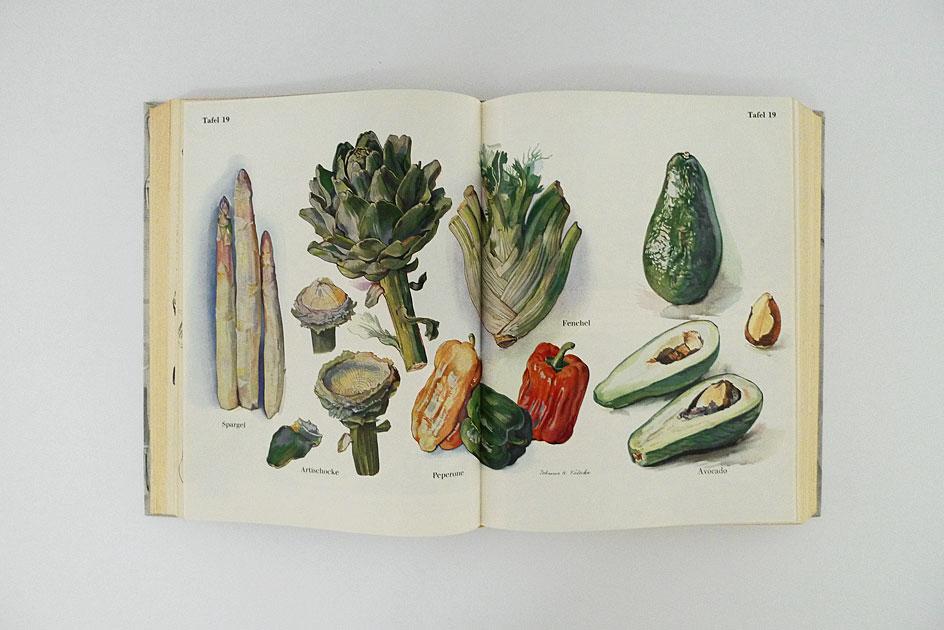 Kochbuch – Elisabeth Fülscher