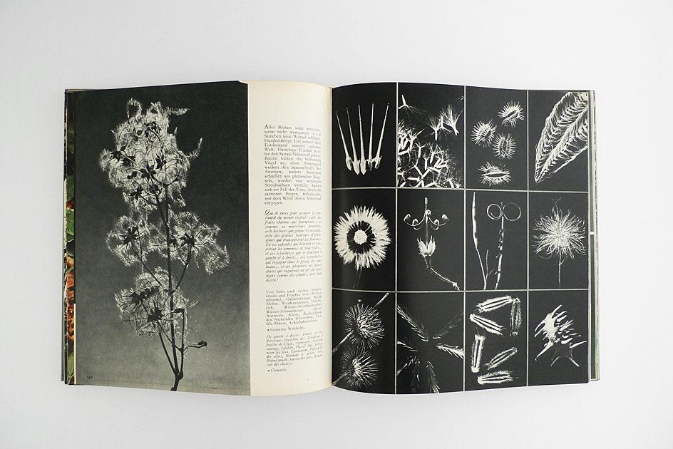 Belauschte Natur; Flora und Fauna in 300 Bildern