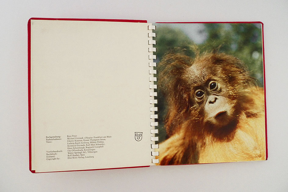 Die schönsten Tiergeschichten der Welt