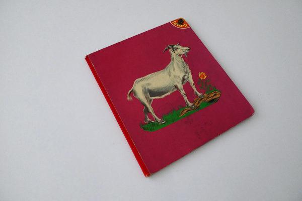 Bilderbuch - 8 Tiere