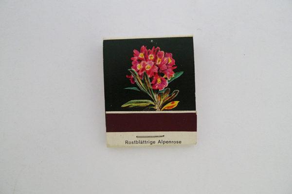 Zündholzbriefchen Rotblättrige Alpenrose
