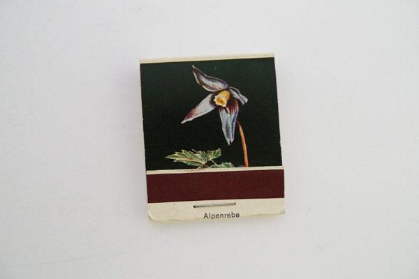 Zündholzbriefchen Rotblättrige Alpenrebe