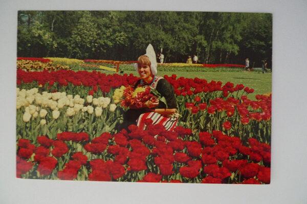 Holland im Blumenschmuck